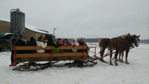 sleigh rides for groups